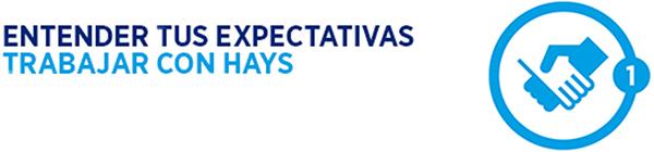 Hays - Expectativas